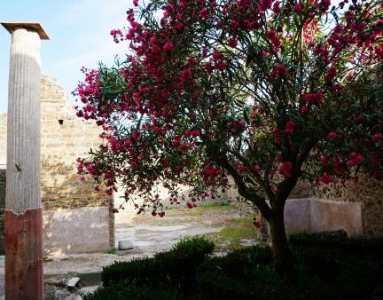 pompeii_0003_ruins