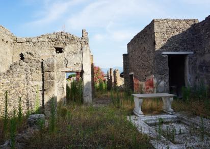 pompeii_0005_ruins