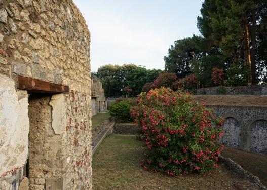 pompeii_0012_ruins