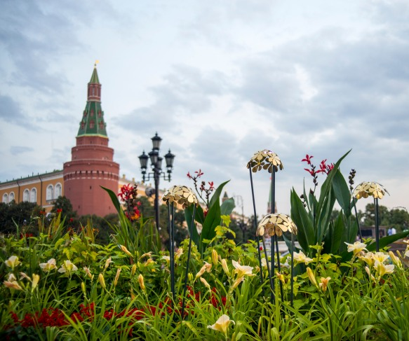 Moscow_Flower_Jam0029