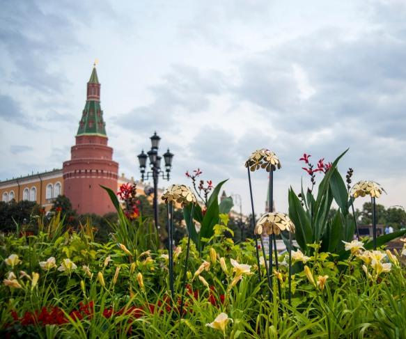 Moscow_Flower_Jam0029