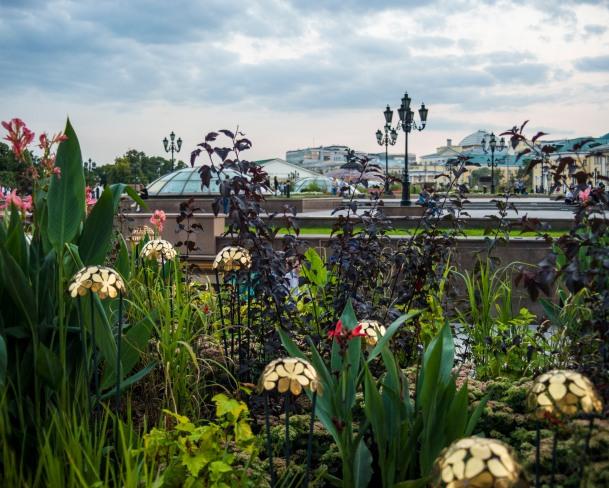 Moscow_Flower_Jam0031