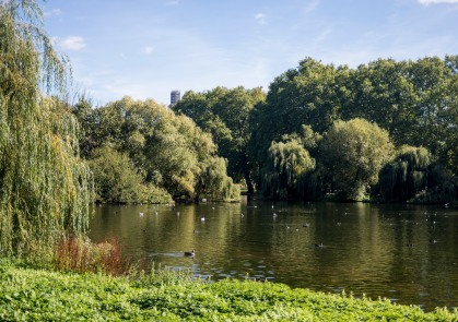England_London_St.James Park_0018