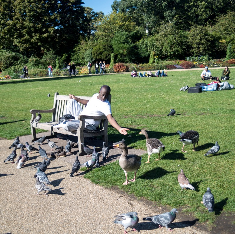 England_London_St.James Park_0025