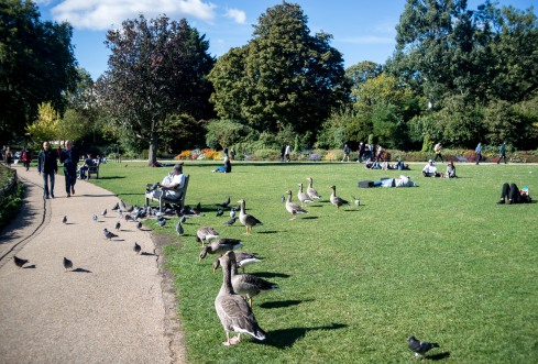 England_London_St.James Park_0028